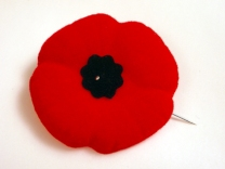 Remembrance Day poppy1[1]